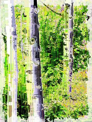 Digital Art - Aspen Grove 6 by Tim Allen