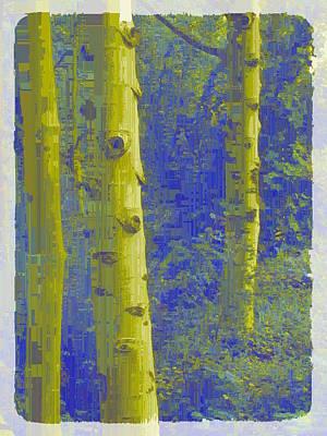 Digital Art - Aspen Grove 8 by Tim Allen
