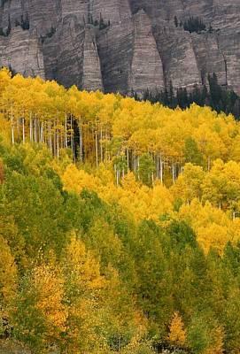 Aspen In Autumn At Silver Jack Reservoir Art Print