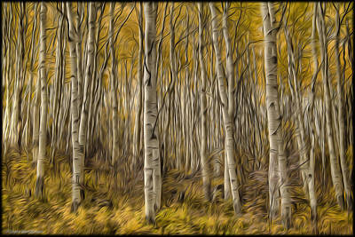 Photograph - Aspen In Oils by Erika Fawcett