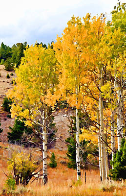Photograph - Aspen Meadows II by Athena Mckinzie