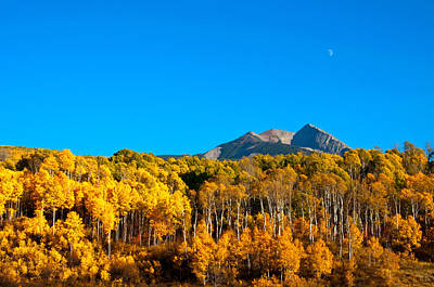 Photograph - Aspen Moon by Eric Rundle