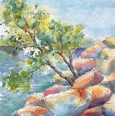 Aspen On The Rocks Art Print by Pat Katz