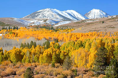 Photograph - Aspen Panorama by Frank Townsley