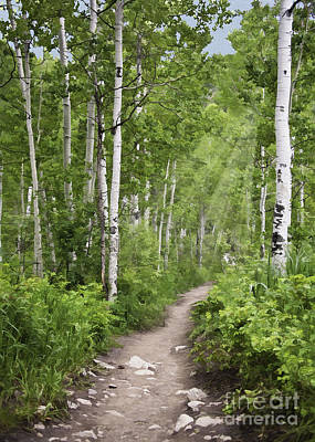 Photograph - Aspen Path by Sharon Foster
