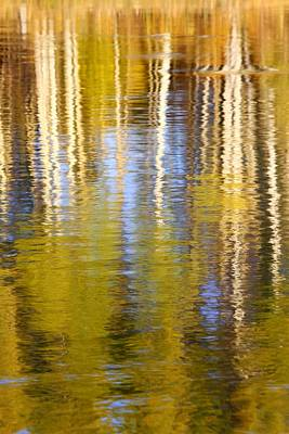 Print featuring the photograph Aspen Reflection by Kevin Desrosiers