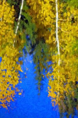 Aspen Reflection Art Print by Pat Now
