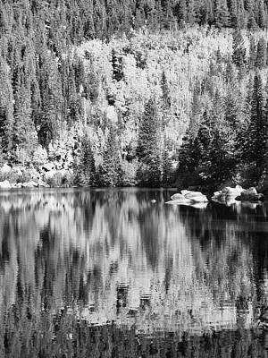 Photograph - Aspen Reflections - Black And White by Harold Rau