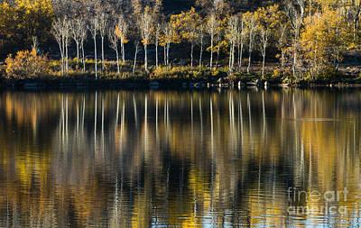 Aspen Reflections Original