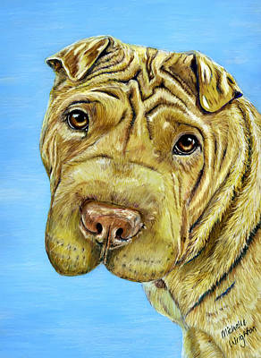 Dog Drawings Drawing - Aspen - Shar Pei by Michelle Wrighton