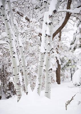 Aspen Snow Art Print