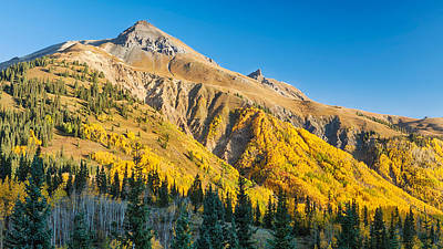Aspen Tree On A Mountain, Coal Bank Art Print by Panoramic Images
