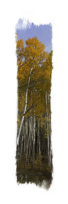 Photograph - Aspen Vertical Panorama by Judy Deist