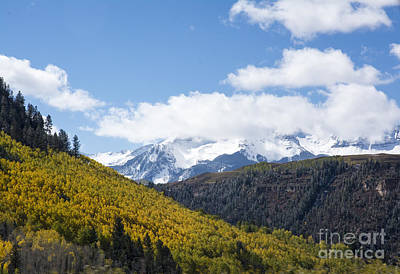 Photograph - Aspens And Mountains by Tim Mulina