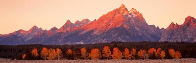 Aspens, Teton Range, Grand Teton Art Print by Panoramic Images