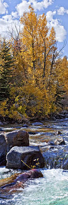 Aspens With Creek Art Print by Kelley King