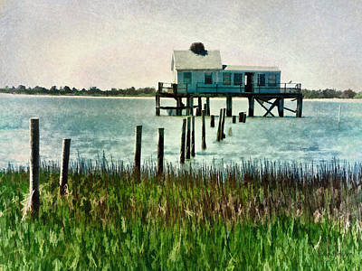 Photograph - Assateague Abandon by Julia Springer