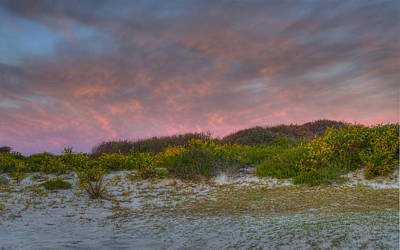 Photograph - Asseteague Island Dune Sunrise by Greg Vizzi