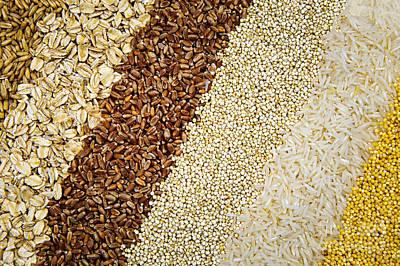 Assorted Grains Art Print