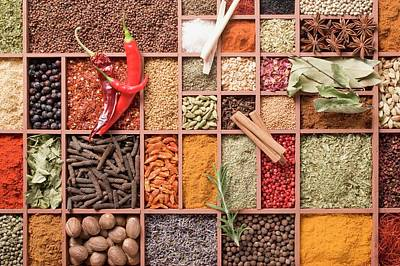 Assorted Spices In Type Case Art Print