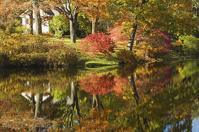 Photograph - Asticou Azalea Garden - Fall Foliage - Mount Desert Island - Maine by Keith Webber Jr