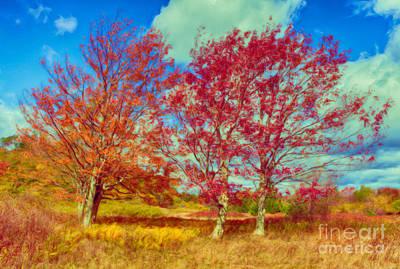 Astonishing Autumn - Fall Colors At Dolly Sods II Print by Dan Carmichael