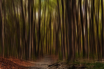 Photograph - Astray- Walking Path Art by Lourry Legarde