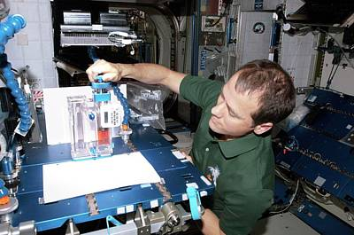 Fluid Photograph - Astronaut Conducting Experiment On Iss by Nasa