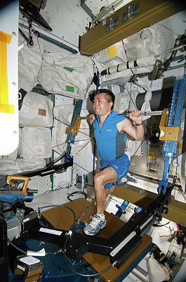 Manned Space Flight Photograph - Astronaut Exercising On The Iss by Nasa
