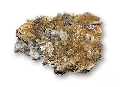 Titanium White Photograph - Astrophyllite Mineral by Dirk Wiersma