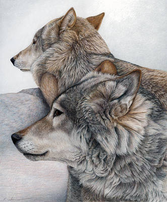 Colored Pencil Painting - At Rest But Ever Vigilant by Pat Erickson