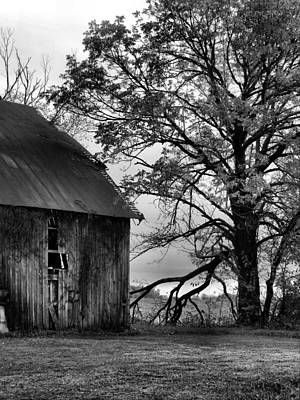 At The Barn In Bw Art Print by Julie Dant
