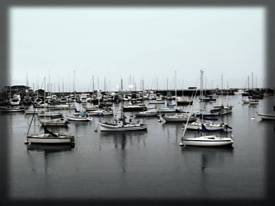 At The Bay  Art Print by Sherry Flaker