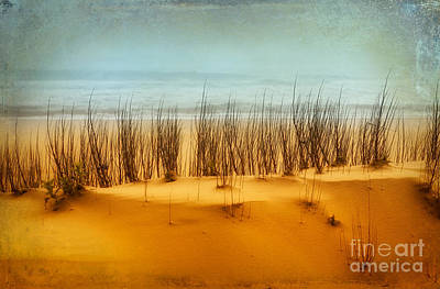 Sand Dunes Painting - At The Beach - Outer Banks II by Dan Carmichael