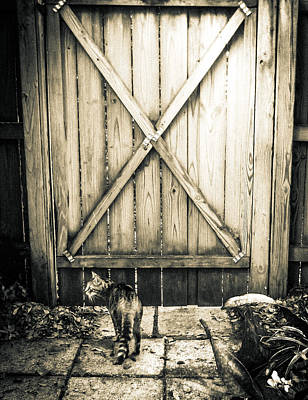 At The Gate Art Print by Christy Usilton