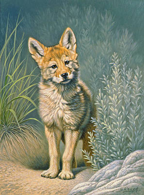 Coyote Painting - At The Play Den by Paul Krapf