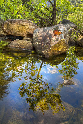 Ocoee Photograph - At The River by Debra and Dave Vanderlaan