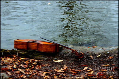 Cello Photograph - At The River's Edge  by Steven Digman