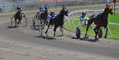 Harness Racing Photograph - At The Track by Todd Hostetter