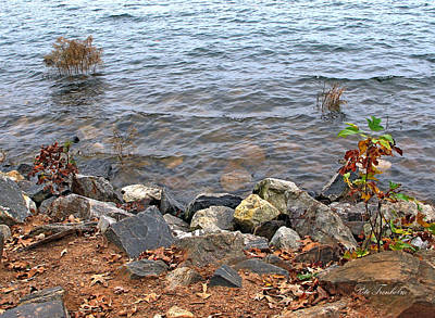 Photograph - At The Water's Edge by Pete Trenholm