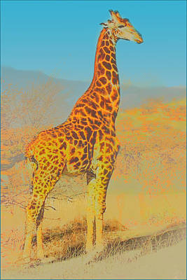 Painting - At The Zoo - Giraffe by Douglas MooreZart