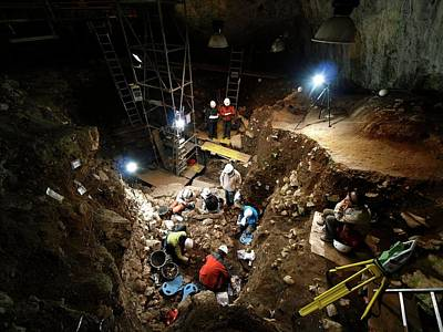 Excavation Photograph - Atapuerca Fossil Excavation by Javier Trueba/msf