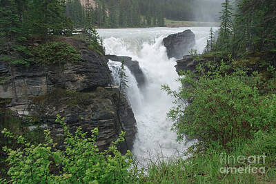Photograph - Athabasca Falls by Charles Kozierok
