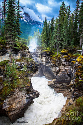 Photograph - Athabasca Falls by Chris Heitstuman