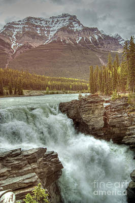 Photograph - Athabasca Falls by David Birchall