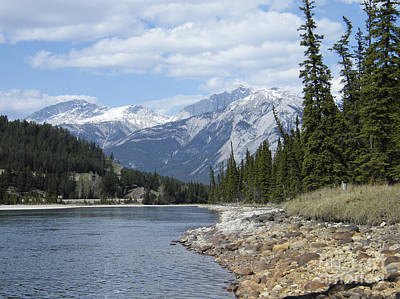 Photograph - Athabasca River - Jasper - Alberta by Phil Banks