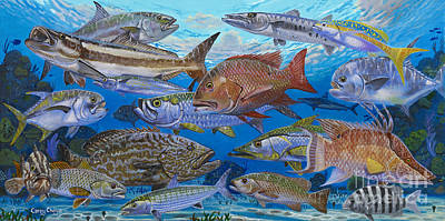 Atlantic Inshore Species In0013 Art Print