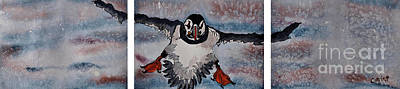 Norway Painting - Atlantic Puffin by Corina Hogan