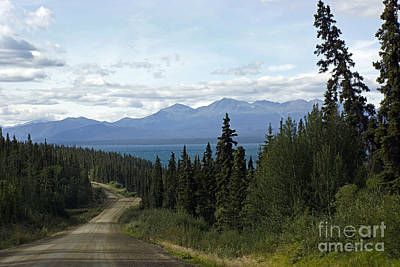 Photograph - Atlin Highway by Inge Riis McDonald