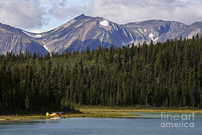 Photograph - Atlin Lake by Inge Riis McDonald